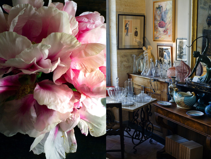antiquites&pivoines